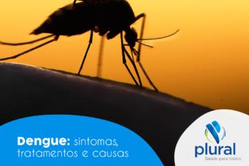 Dengue: sintomas, tratamentos e causas